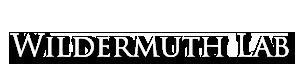 Wildermuth Lab Header